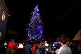 Fotogalerie Rozsvěcování vánočního stromu, foto č. 4